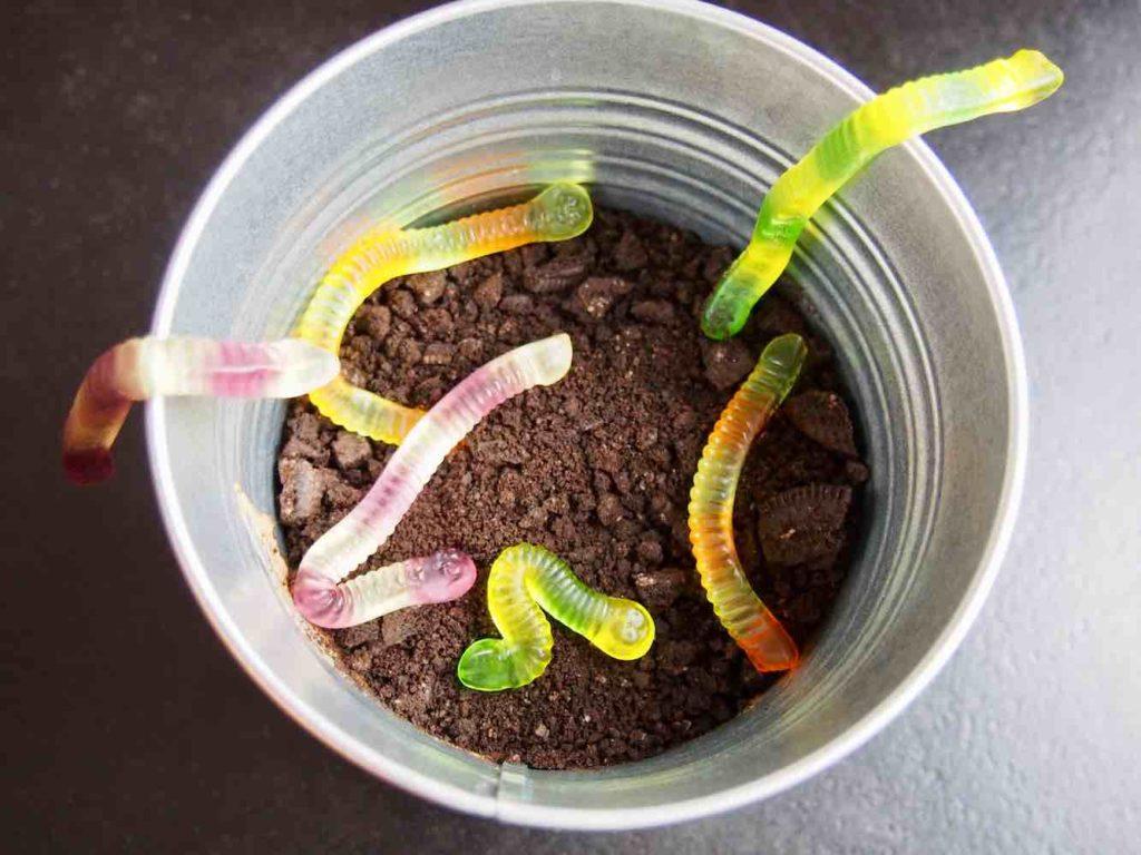 Wurmpudding mit Erde